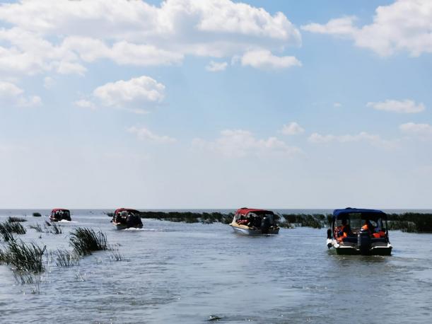 Turisii sperie speciile de pasari din Delta Dunarii